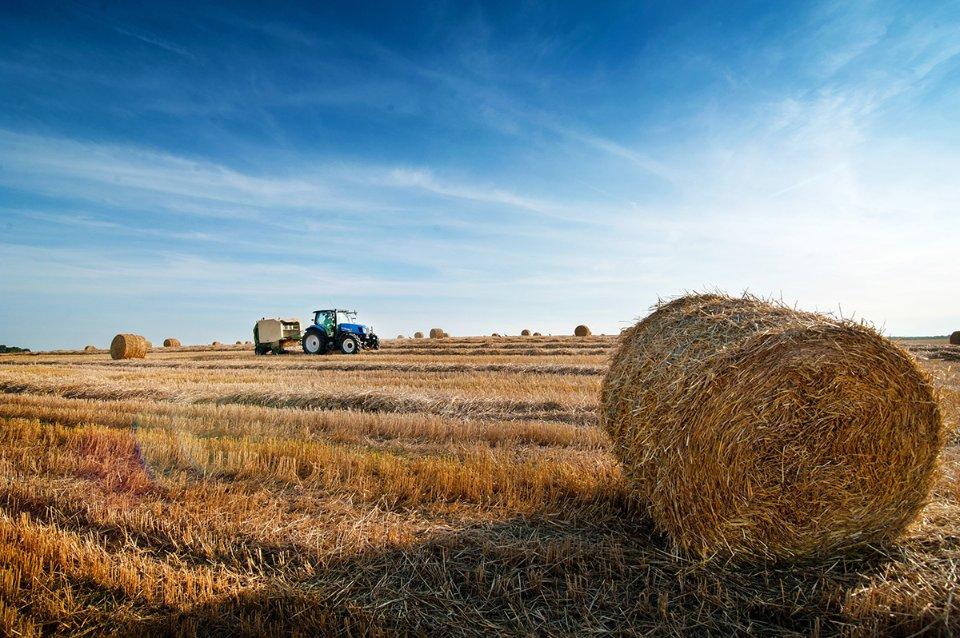 Намагаючись розворушити покупців, Роман Лещенко, міністр АПК, порівняв придбання землі з банківським вкладом і назвав пай «найкращим депозитом» / Getty Images