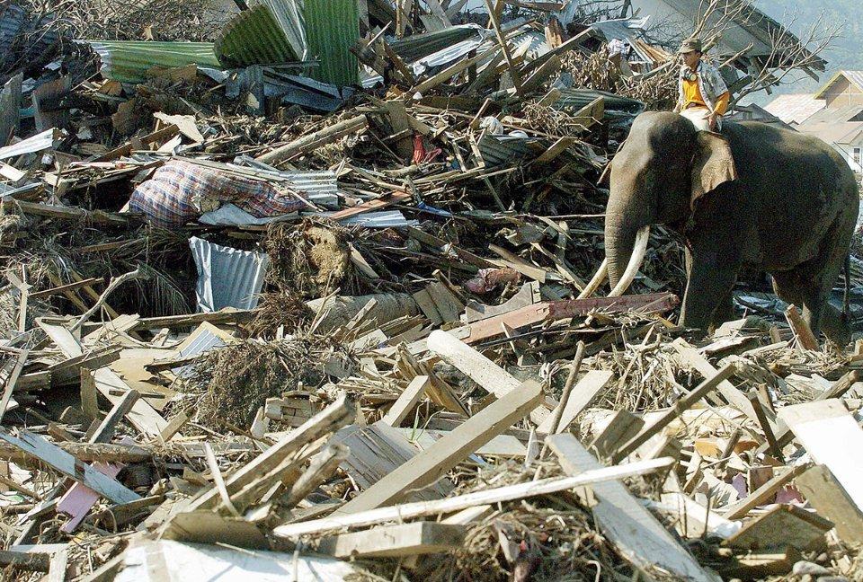 Последствия цунами на острове Суматра