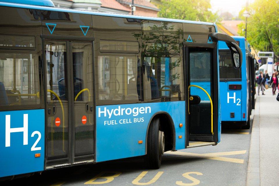 Міській автобус на водні / Getty Images