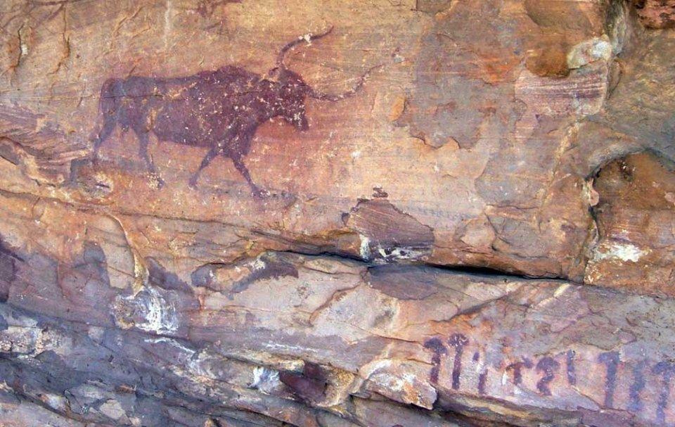 Гриби та бик з печери Сельва Паскуала